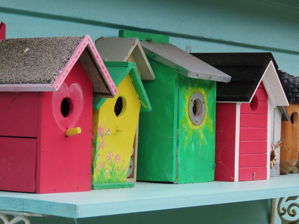 Blir glad av fuglekassene i varierte farger