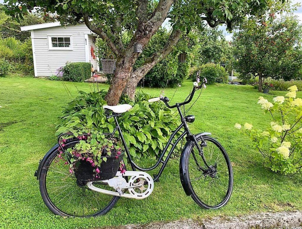 En svart sykkel med blomsterkurv ønsker oss velkommen inn
