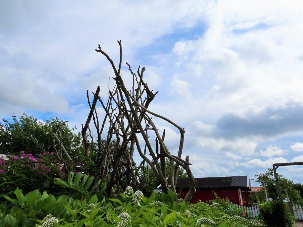 Kolonihager som rekreasjon og hageglede – se mangfoldet - en tre skulptur i Eliannes hage
