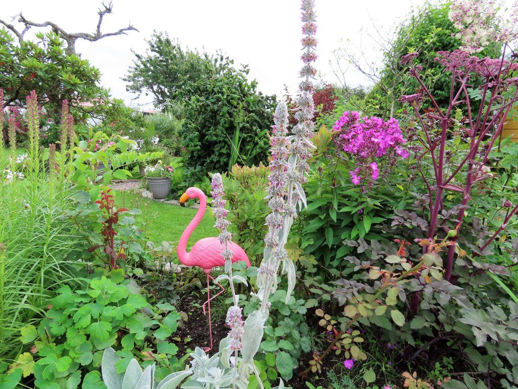 Turbolottes kolonihage er en kreativ fargeeksplosjon - flotte blomsterbed