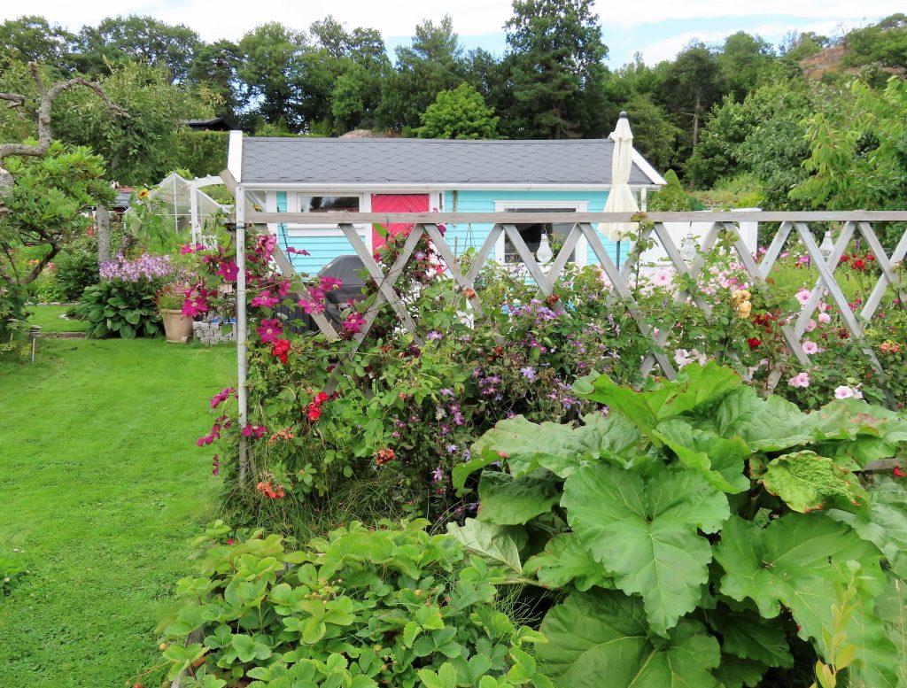 Turbolottes kolonihage er en kreativ fargeeksplosjon - hytta bak blomsterbed