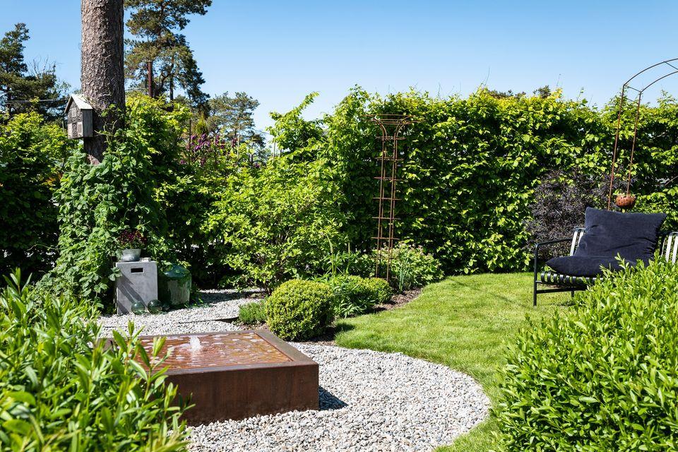 Vinn et abonnement å Hagelivoguterom - I hagen til Furulunden - foto Helge EEK