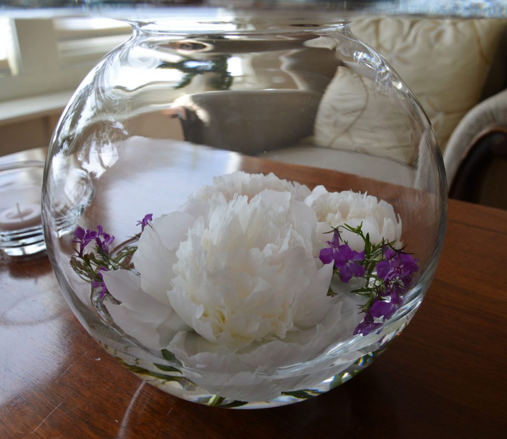 Peoner gjør seg godt i vaser - også nedi en glassvase
