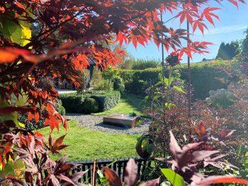 Bli med på videotur i Furulunden en vakker septemberdag - Fra en sitteplass i hagen